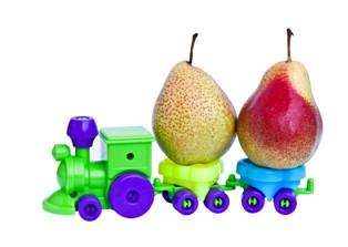 צעצועים אורגניים עשויים מחומרים טבעיים
