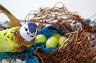 צעצוע אורגני בצורת ציפור בקן